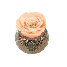 Eternal Roses® Centerpiece Apricot Mini Soho Royal Eternal Luxury Rose