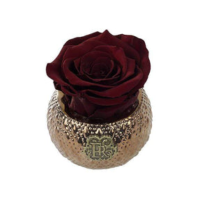 Eternal Roses® Centerpiece Wineberry Mini Soho Royal Eternal Luxury Rose