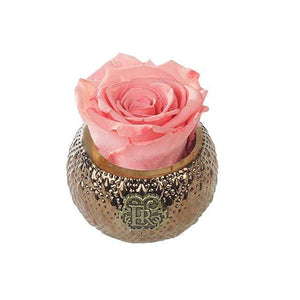 Eternal Roses® Centerpiece Amarylis Mini Soho Royal Eternal Luxury Rose