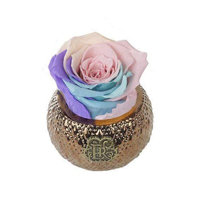 Eternal Roses® Centerpiece Candy Rainbow Mini Soho Royal Eternal Luxury Rose