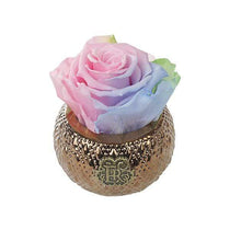 Eternal Roses® Centerpiece Aurora Mini Soho Royal Eternal Luxury Rose