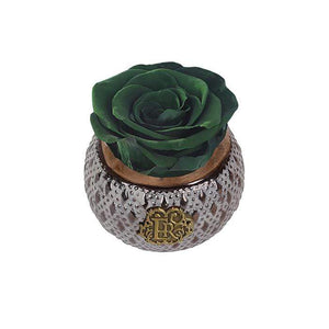 Eternal Roses® Centerpiece Wintergreen Mini Soho Steel Eternal Luxury Rose