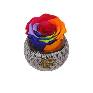 Eternal Roses® Centerpiece Rainbow Mini Soho Steel Eternal Luxury Rose