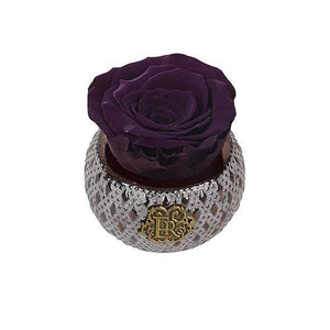 Eternal Roses® Centerpiece Plum Mini Soho Steel Eternal Luxury Rose