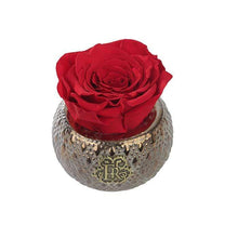 Eternal Roses® Centerpiece Scarlet Mini Soho Steel Eternal Luxury Rose