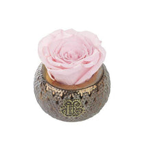 Eternal Roses® Centerpiece Blush Mini Soho Steel Eternal Luxury Rose