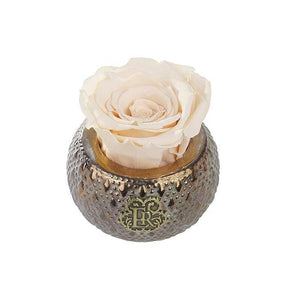 Eternal Roses® Centerpiece Champagne Mini Soho Steel Eternal Luxury Rose