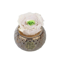 Eternal Roses® Centerpiece Chartreuse Mini Soho Steel Eternal Luxury Rose