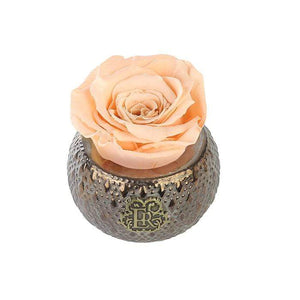 Eternal Roses® Centerpiece Apricot Mini Soho Steel Eternal Luxury Rose