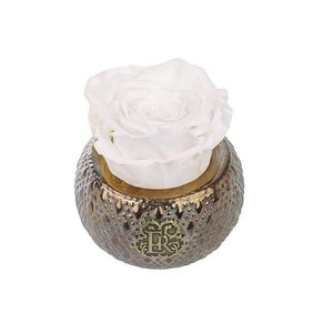Eternal Roses® Centerpiece Frost Mini Soho Steel Eternal Luxury Rose