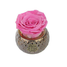 Eternal Roses® Centerpiece Primrose Mini Soho Steel Eternal Luxury Rose