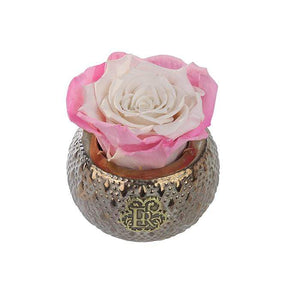 Eternal Roses® Centerpiece Sweet Pink Mini Soho Steel Eternal Luxury Rose