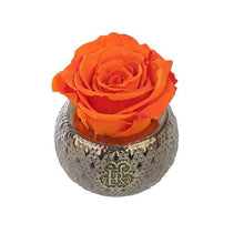 Eternal Roses® Centerpiece Sunset Mini Soho Steel Eternal Luxury Rose