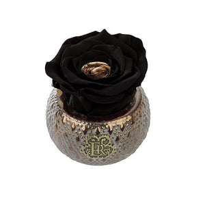 Eternal Roses® Centerpiece Starry Night Mini Soho Steel Eternal Luxury Rose
