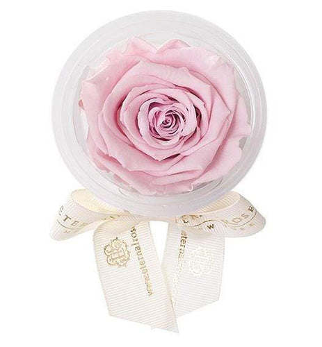Eternal Roses® Blush Eternal Rose Party Favor