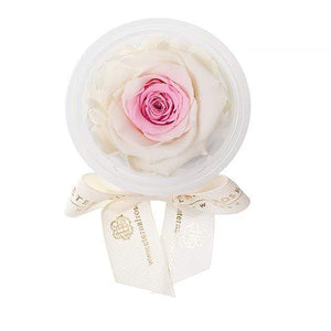 Eternal Roses® Peony Eternal Rose Party Favor