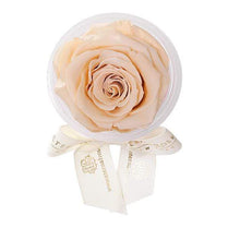 Eternal Roses® Apricot Eternal Rose Party Favor
