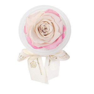 Eternal Roses® Sweet Pink Eternal Rose Party Favor