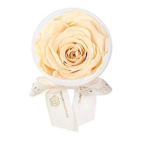 Eternal Roses® Champagne Eternal Rose Party Favor