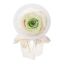 Eternal Roses® Chartreuse Eternal Rose Party Favor