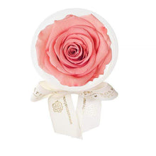Eternal Roses® Amarylis Eternal Rose Party Favor