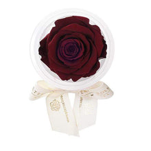 Eternal Roses® Wineberry Eternal Rose Party Favor
