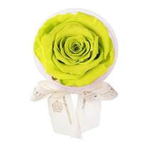 Eternal Roses® Mojito Eternal Rose Party Favor