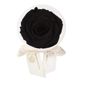 Eternal Roses® Midnight Eternal Rose Party Favor