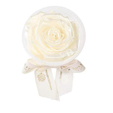 Eternal Roses® Frosted Pearl Eternal Rose Party Favor