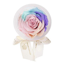 Eternal Roses® Candy Rainbow Eternal Rose Party Favor