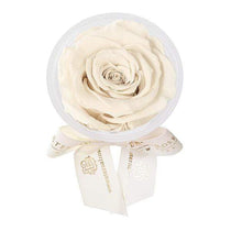 Eternal Roses® Pearl Eternal Rose Party Favor