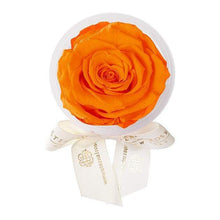 Eternal Roses® Sunset Eternal Rose Party Favor