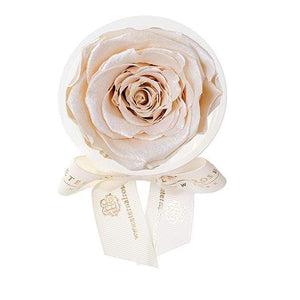 Eternal Roses® Pearly Champagne Eternal Rose Party Favor