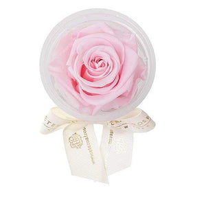 Eternal Roses® Pink Martini Eternal Rose Party Favor