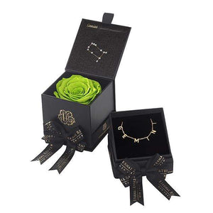 Eternal Roses® Mojito Gemini Astor Box & Necklace Bundle