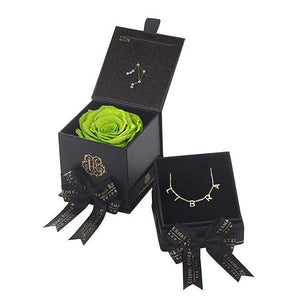 Eternal Roses® Mojito Libra Astor Box & Necklace Bundle