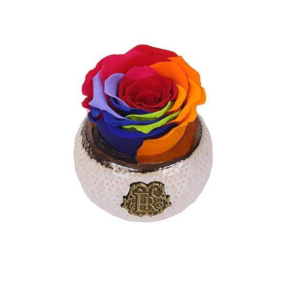 Eternal Roses® Classic Mini Classic Eternal Rose in Rainbow