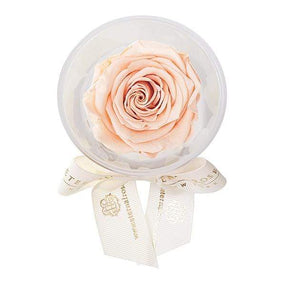 Eternal Roses® Peach Mini Eternal Rose Party Favor Set of 4