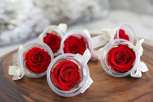 Eternal Roses® Mini Eternal Rose Party Favor Set of 6