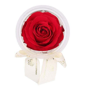 Eternal Roses® Scarlet Mini Eternal Rose Party Favor Set of 6