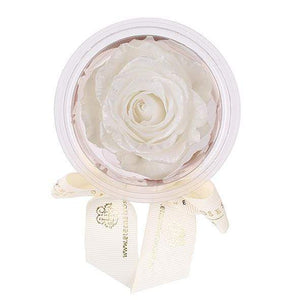 Eternal Roses® Frosted Pearl Mini Eternal Rose Party Favor Set of 6