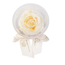 Eternal Roses® Creme Mini Eternal Rose Party Favor Set of 6