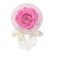 Eternal Roses® Primrose Mini Eternal Rose Party Favor Set of 6