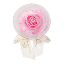 Eternal Roses® Baby Pink Mini Eternal Rose Party Favor Set of 6