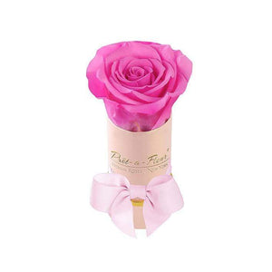 Eternal Roses® Single Rose Gift Shimmery Pink / Hot Pink Shimmery Liberty Eternal Rose Gift Box for BFCM