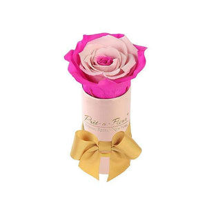 Eternal Roses® Single Rose Gift Shimmery Pink / Fuschia Lily Shimmery Liberty Eternal Rose Gift Box for BFCM