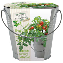 Load image into Gallery viewer, Patio Flavours Minibell Cherry Tomatoes Galvanised Bucket Grow Set