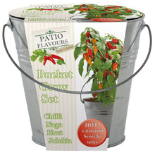 Load image into Gallery viewer, Patio Flavours Naga Chilli Galvanised Bucket Grow Set