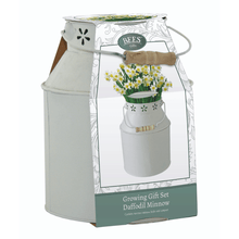 Load image into Gallery viewer, Daffodil 'Minnow' Milk Churn Planter