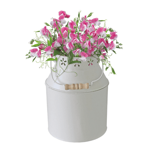 BEES® Sweet Pea Milk Churn Planter
